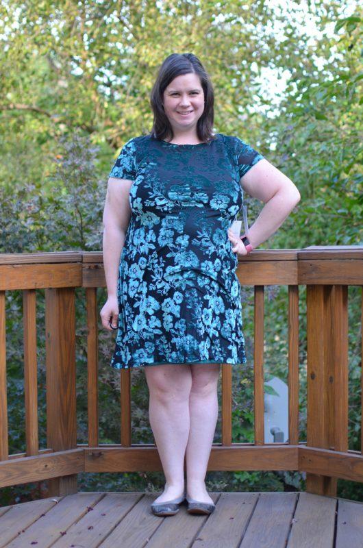 Beauport Kara Velvet Dress